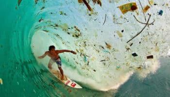 pollution,industrie du cannabis,déchets plastique,environnement