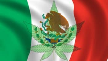 cour suprême,légalisation Mexique