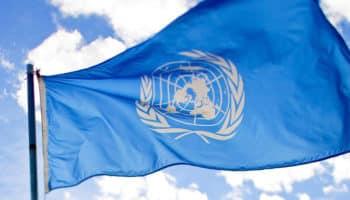 Organisation mondiale de la santé,Comité d'experts sur la pharmacodépendance,ONU