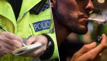 forces policières,consommateurs de cannabis