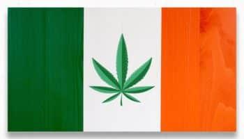 Irlande,Simon Harris,cannabis en Irlande