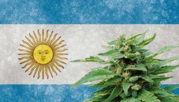 chambre de commerce,Argentine