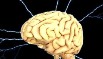 CELLULES DU CERVEAU,Protéine Alzheimer