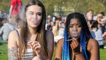 Cannabaco ,cannabis sans odeur