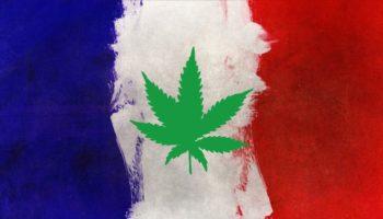 cannabis thérapeutique France