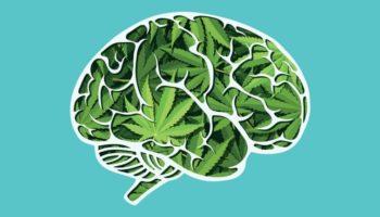 schizophrénie,traitement des psychoses