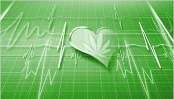changements structurels cardiaques,fonction cardiaque