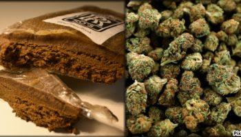 weed,haschisch