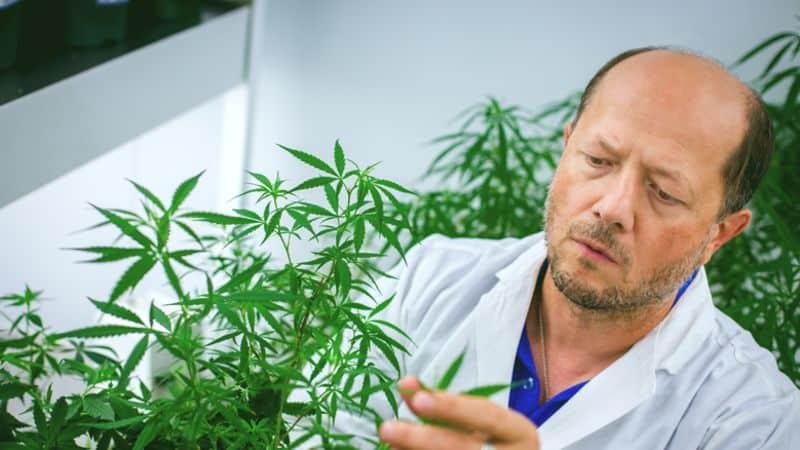 Dr.-Igor-Kovalchuk.jpg