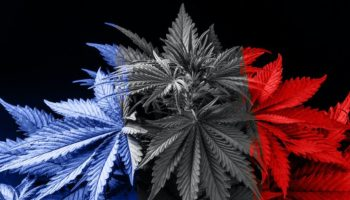 collective ACT, France Therapeutic cannabis