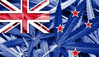 stemmen over legalisatie, legalisatie in Nieuw-Zeeland