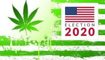 Légalisation USA 2020,Élections américaines