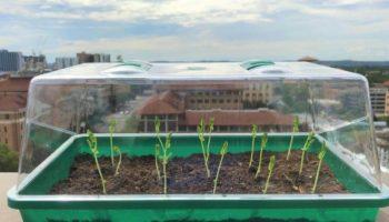 gels présents dans le sol,hybrides gel-polymère,Extraire l'eau de l'air,L'auto-arrosage du sol,agriculture autonome