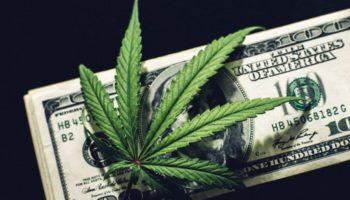 fiscalité du marché californien,impôt cannabis,taxes légales
