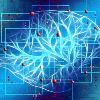 neurotransmetteurs ,L'effet du microbiote,comportements dépressifs,Institut Pasteur,bactéries de l'intestin